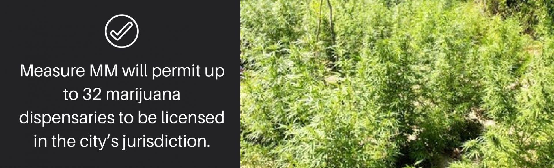 2-long-beach-marijuana